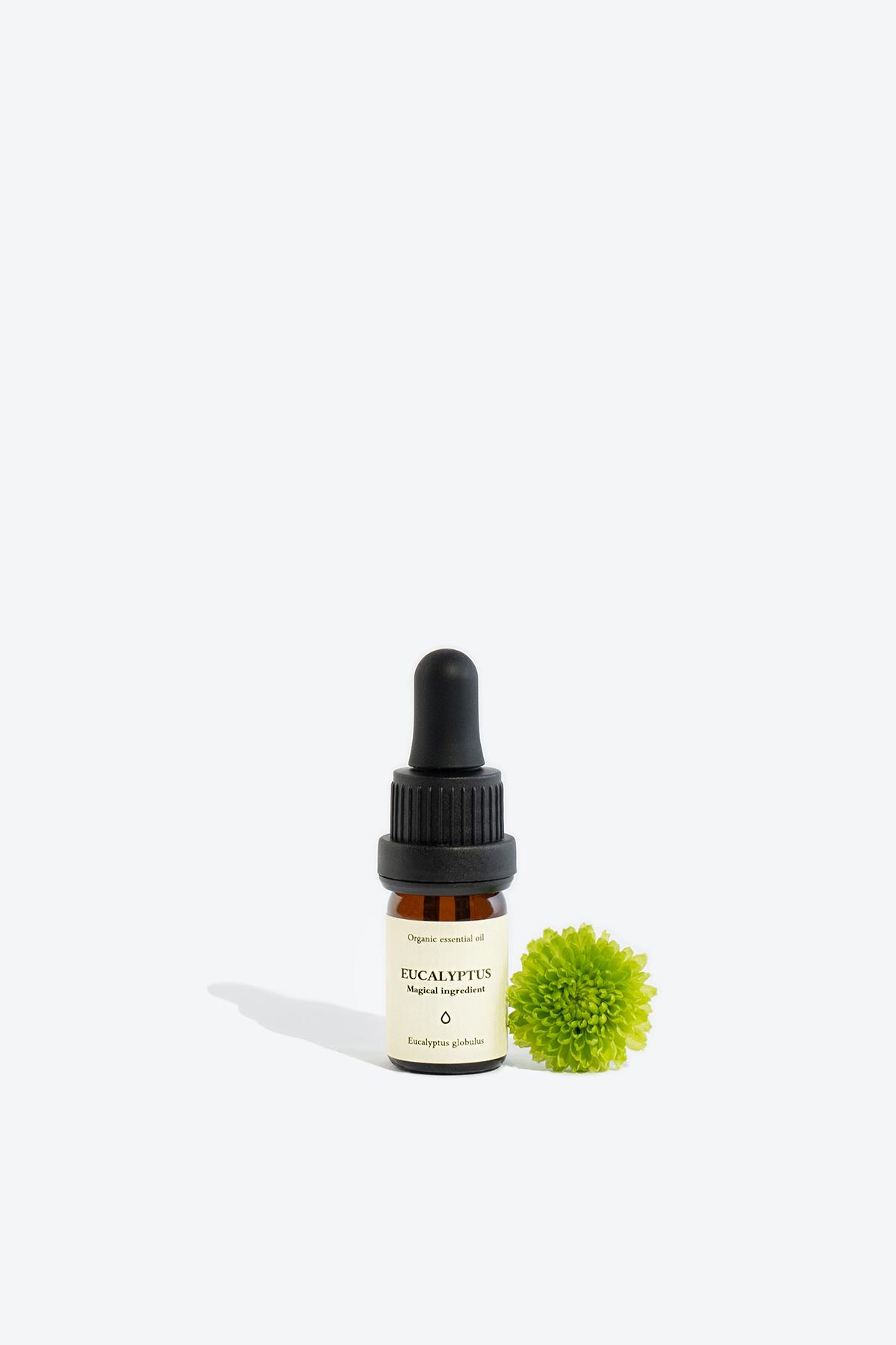 Organic eucalyptus essential oil SMELLS LIKE SPELLS