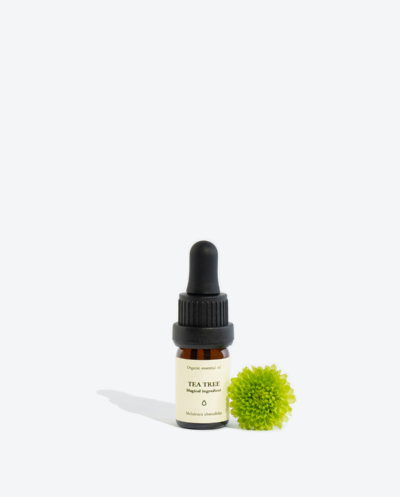 Organic tea tree essential oil SMELLS LIKE SPELLS